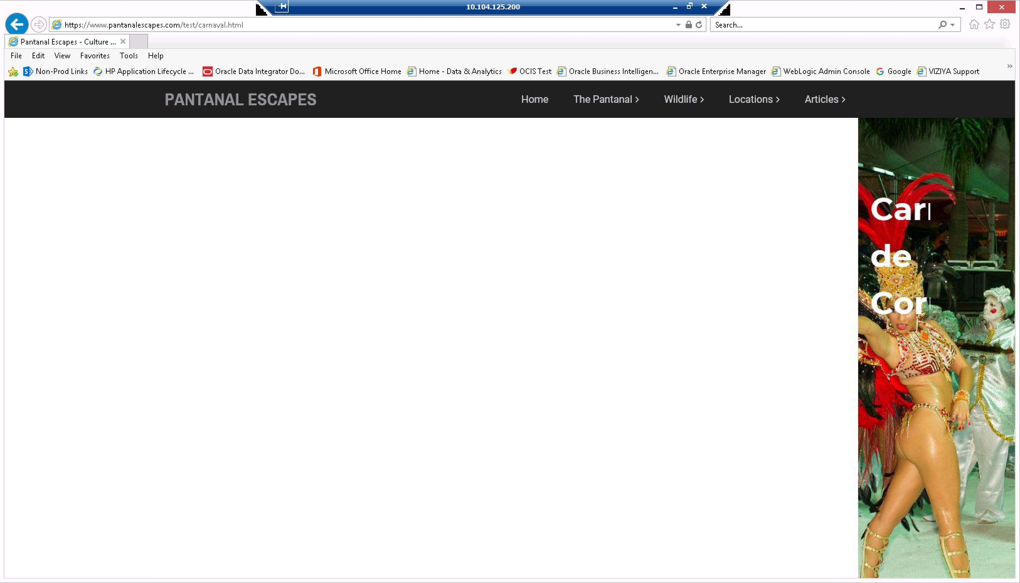Mega Menu compatibility issues with Internet Explorer